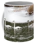 Trumpter Swans Panorama Coffee Mug