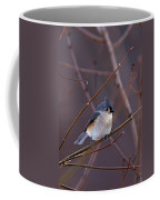 Tufted Titmouse In Winter Coffee Mug