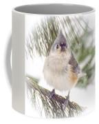 Tufted Titmouse Snow Face Coffee Mug