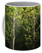 Branches Of Lovely Light Coffee Mug