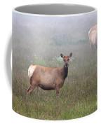 Tule Elk In Fog Coffee Mug
