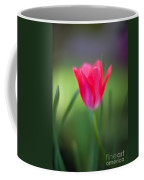 Tulip Amongst Coffee Mug