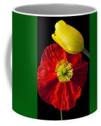 Tulip And Iceland Poppy Coffee Mug by Garry Gay