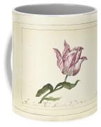 Tulip, Anna Cornelia Moda, 1677 Coffee Mug