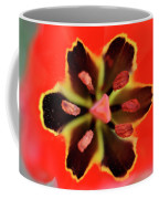 Tulip At Amatzia Forest - 4 Coffee Mug