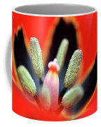 Tulip At Amatzia Forest - 5 Coffee Mug