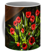 Tulip Beauties Coffee Mug