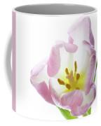 Tulip Bloom 2 Coffee Mug