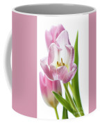 Tulip Bloom 3 Coffee Mug