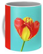 Tulip Burst Coffee Mug