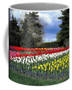 Tulip Country Coffee Mug