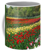 Tulip Fields Coffee Mug