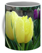 Tulip Flowers Artwork Tulips Art Prints 10 Floral Art Gardens Baslee Troutman Coffee Mug