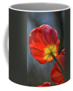 Tulip From Below Coffee Mug