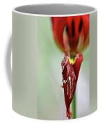 Tulip In Blossom 1 Coffee Mug