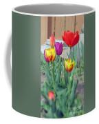 Tulip Mixture Coffee Mug