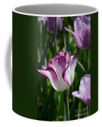 Tulip Splendor Coffee Mug