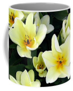 Tulip Town 16 Coffee Mug