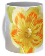 Tulip Tree Flower Coffee Mug