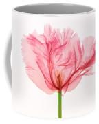 Tulip, X-ray Coffee Mug