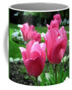 Tulipfest 3 Coffee Mug