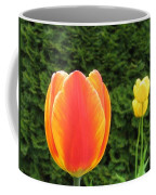 Tulipfest 4 Coffee Mug