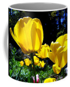 Tulipfest 5 Coffee Mug