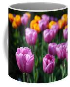Tulips 14 Coffee Mug