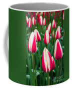 Tulips 7 Coffee Mug