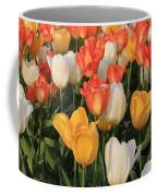 Tulips Ablaze With Color Coffee Mug