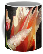 Tulips Artwork Flowers Floral Art Prints Spring Peach Tulip Flower Macro Coffee Mug