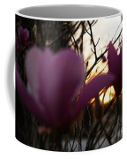 Tulips At Sunset I Coffee Mug