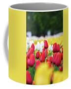 Tulips By Jared Windmuller - Tulip - Red -  Coffee Mug