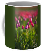 Tulips Dream Coffee Mug