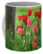 Tulips Flowers Art Prints Spring Tulip Flower Artwork Nature Art Coffee Mug