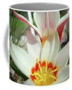 Tulips Flowers Artwork 1 Tulip Flower Art Prints Spring Floral Art White Tulips Garden Coffee Mug