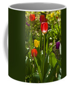 Tulips In The Garden Coffee Mug