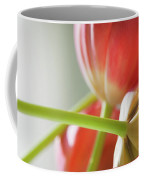 Tulips In The Morning Coffee Mug by Theresa Tahara