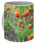 Tulips In The Springtime Coffee Mug