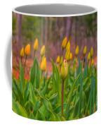 Tulips Love Coffee Mug