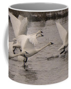 Tundra Swans Take Off Coffee Mug