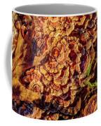 Turkey Tail Mushrooms  Coffee Mug