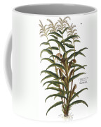 Turkish Corn, 1735 Coffee Mug