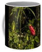 Turk's Cap 1 Coffee Mug