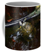 Turtle And The Stick Coffee Mug