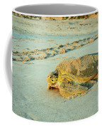 Turtle Day Coffee Mug