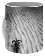 Turtle Ridge Coffee Mug by Sean Davey