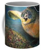 Turtle Run Coffee Mug