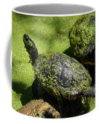 Turtle Yoga Coffee Mug
