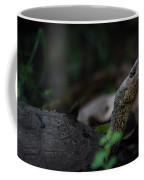 Turtle's Neck 1 Coffee Mug